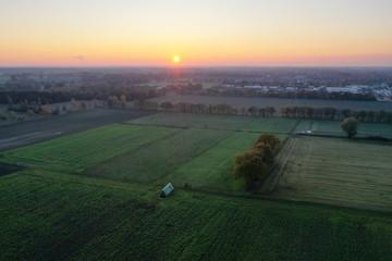 Luftaufnahme Ackerbau Landwirtschaft mit Feldweg und Bäumen