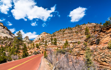 Zion-Mount Carmel Highway at Zion National Park