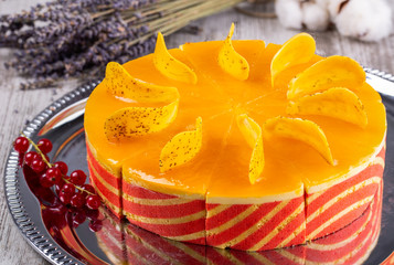 Cake with mango mousse and black currant mousse in a combination of chocolate biscuit