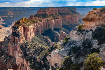 North Rim Scenic Drive, Grand Canyon National Park, Arizona, USA