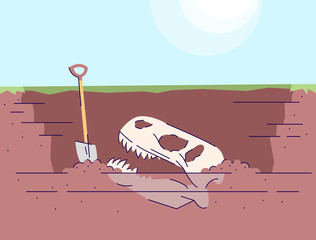 Dinosaur skull excavation flat vector illustration. Prehistoric animals researching. Paleontological expedition. Bones of extinct animal in ground, shovel. Skeleton and spade cartoon backdrop