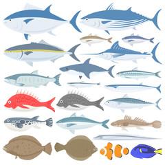 海水魚のイラストセット