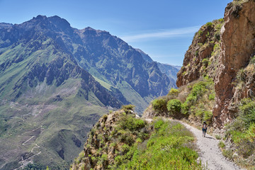 A young woman hiking the Colca Canyon, one of the deepest in the world. Peru
