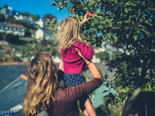Mother lifting toddler to pick apples