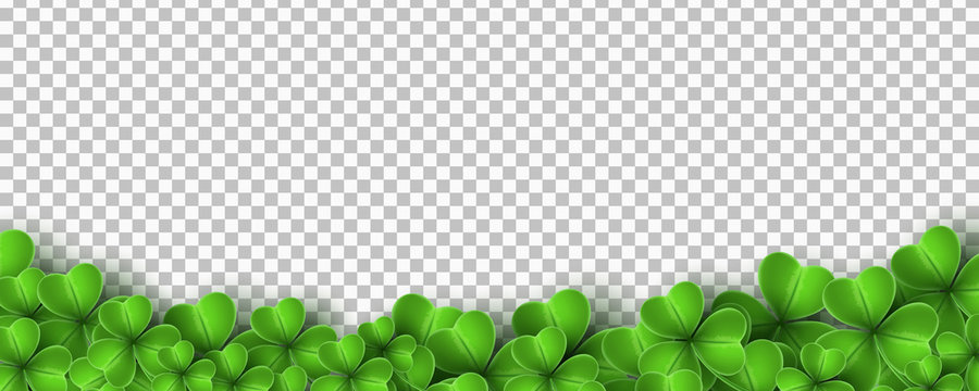 Realistic green clovers isolated on transparent background. Saint Patricks Day. Vector illustration