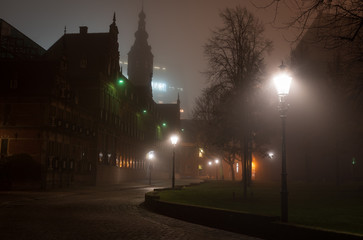 Fotomurales - Streetlights and a monumental  government building on a foggy, autumn night in the city of Groningen.