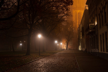 Fotomurales - Streetlights in a park on a foggy night in autumn.