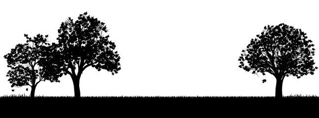 A field of grass or park and trees in silhouette background design element