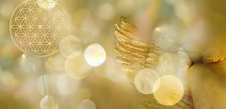 Banner Blume des Lebens mit Engelsflügel in goldenem Lichterfeld