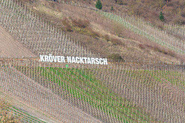 TRABEN-TRARBACH, GERMANY - MARCH 26, 2016: Billboard in the vineyards with inscription Kröver Nacktarsch. German wine-growing region on the Moselle near Traben-Trarbach, Rhineland-Palatinate, Germany,