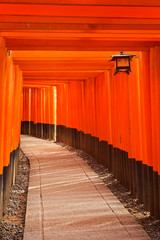Torii gates of the Fushimi Inari Shrine in Kyoto, Japan