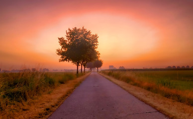 Foto op Plexiglas Koraal Colorful glowing sunrise over a countryside farming area, creating an idyllic scenic landscape
