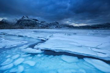 Fototapete - Frozen fjord on the Lofoten in northern Norway in winter