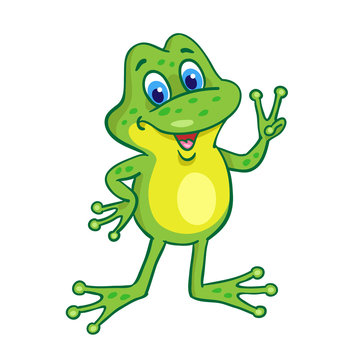 Little funny happy frog.  In cartoon style. Isolated on white background. Vector illustration.
