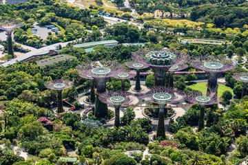 Blick vom Marina Bay Sands Hotel auf  die Gardens by the Bay in Singapur