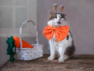 Funny cat with rabbit-like ears and a big carrot in a basket