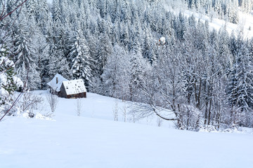 winter landscape with wooden hut with snowy