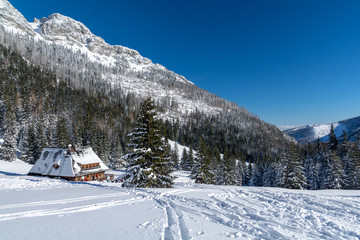 tatra mountains with wooden hut with snow during winter, Zakopane, Poland