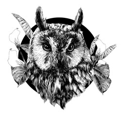 owl head full face in circle decorated with Calla flowers and leaves, sketch vector graphics monochrome illustration on white background