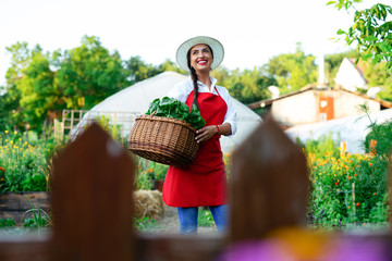 Beautiful young woman holding basket with fresh vegetables in the garden.
