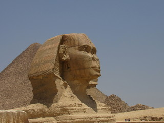 Pictures of Egypt and archeological pieces.