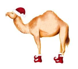 Winter happy camel in Santa hat and shoes. Christmas design for cards, backgrounds, fabric, wrapping paper. Merry Christmas and Happy New Year vertical greeting card.