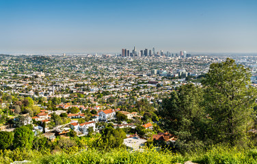 View of Los Angeles from Mount Hollywood Fototapete