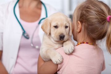 Little girl holding her puppy at the veterinary healthcare clinic