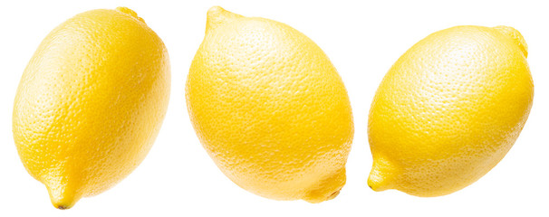 collection of lemon isolated on a white background Fotobehang