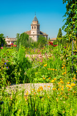 Flowery view of the Generalife and the Alhambra Palace in Granada, Andalusia, Spain.