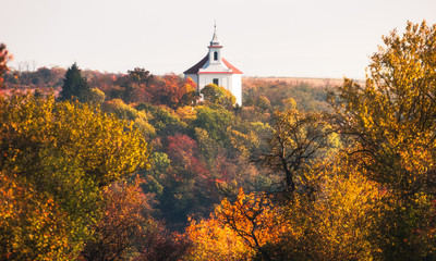Beautiful Colorful Autumn Forest Landscape with the Chapel of St. Anthony of Padua and St. Florian on the Hill  in Dolni Kounice, Czech Republic