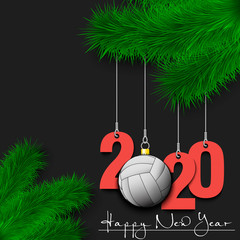 Volleyball ball and 2020 on a Christmas tree branch