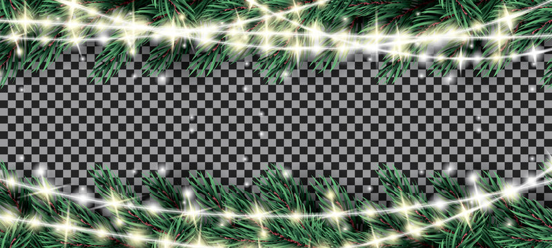 Fir Branch with Neon Lights on Transparent Background.