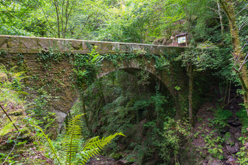 arch of the stone bridge over the river Eume in the Fragas do Eume