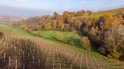 castelvetro hills of modena shooting with drone in autumn