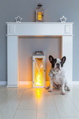 French bulldog lying on the floor at the fireplace