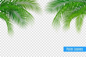 Realistic Tropical Leaves Frame Wall mural