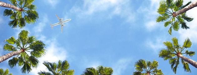 Photo sur Aluminium Palmier Airplane flying above the palm trees.