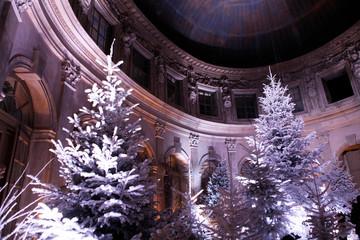 Noel a Vaux le Vicomte