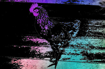 Silk Screen Negative of a Chicken