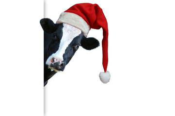Fotobehang Koe Christmas greeting card with cow on a white background