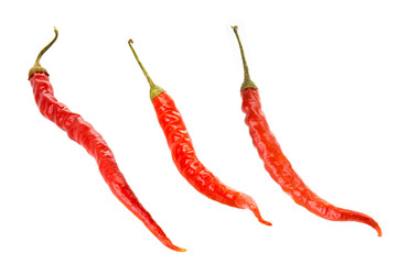 Canvas Prints Hot chili peppers Red hot chili pepper isolated on a white background
