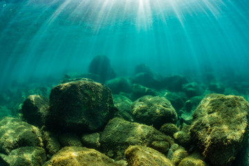 Wall Mural - Rays of sunlight shining into sea, underwater view