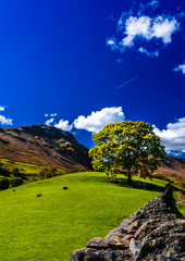 Lake District landscape in the surroundings of Grasmere village in Cumbria, England. Sunny day with blue sky and fluffy clouds.