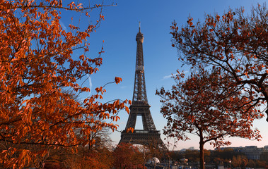 Beautiful view of autumn trees with the Eiffel tower in the foreground in Paris.