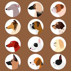 set of dog profiles