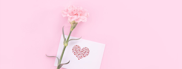 Beautiful, fresh elegant carnation flower bouquet with white greeting thanks gift card isolated on bright pink color background, top view, flat lay concept.
