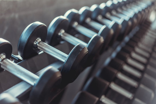 Rows of Metal Dumbbells on Rack in the Gym.