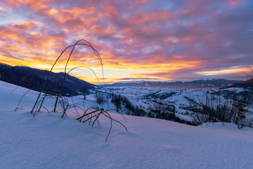 mountainous countryside in winter at dawn. snow covered hills and fields of carpathian rural area rolling off in to the distant krasna ridge. glowing fog in the valley. colorful clouds on the sky