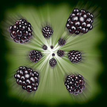 Fruit 10B